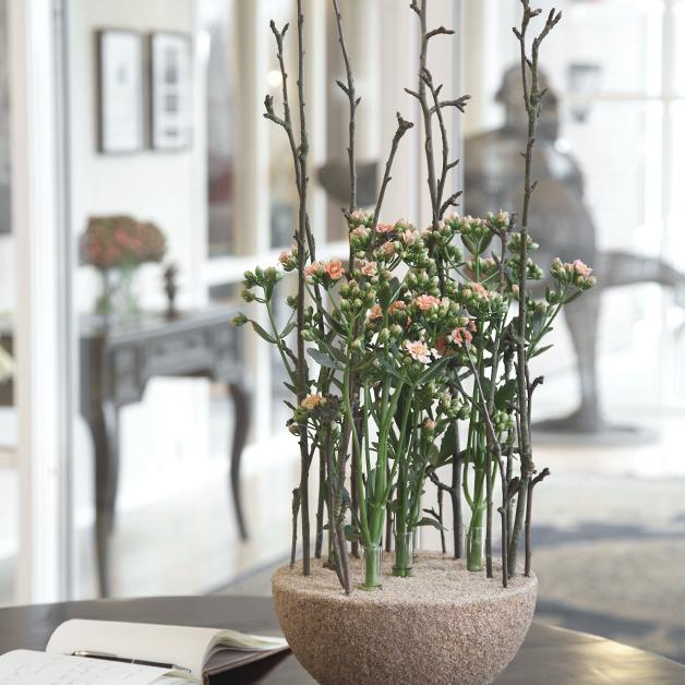 Blomster til erhverv - Skråsnit